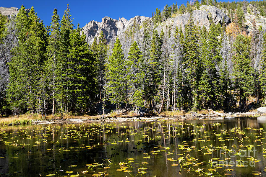 Dream Lake In Rocky Mountain National Park Photograph
