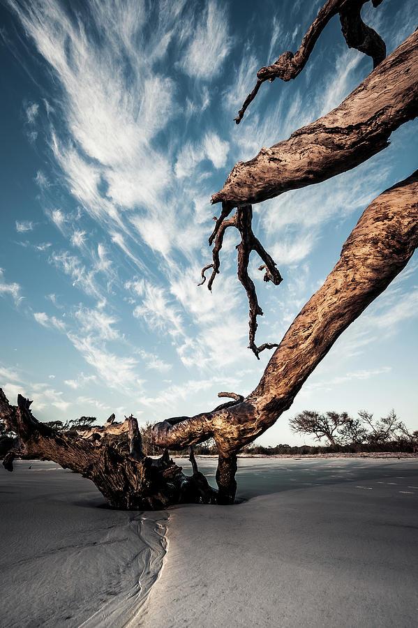 Beaches Photograph - Drifting Sky by Steven Norris