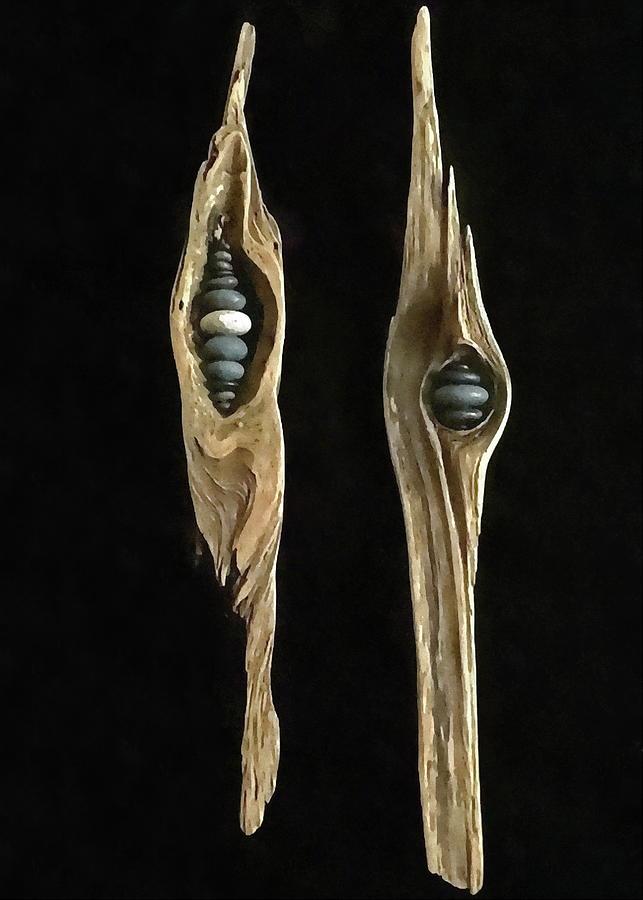 Driftwood Photograph - Driftwood Art by Andrea Kollo