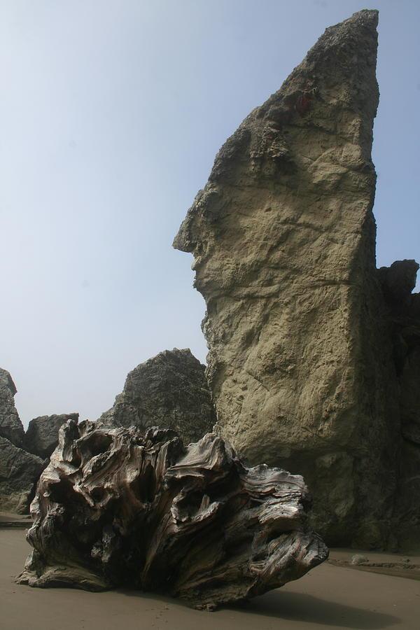 Driftwood Rock Peak by Dylan Punke