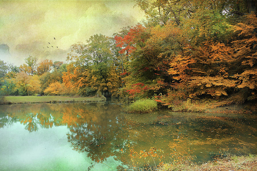 Driscoll Pond by John Rivera