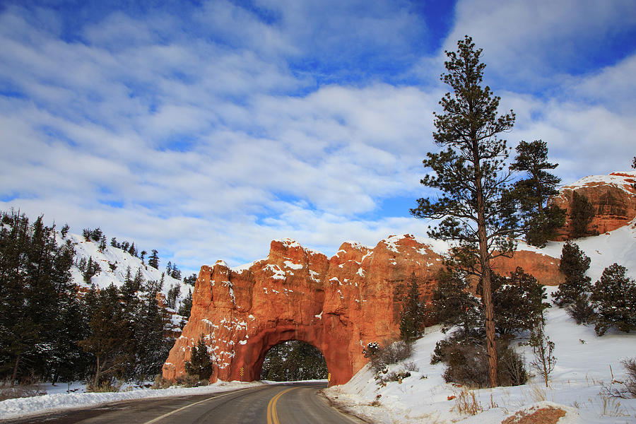 Drive-thru Arch Red Canyon State Park Photograph