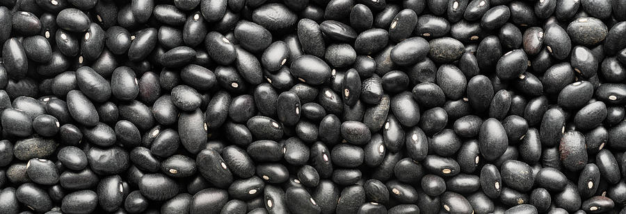 Dry Black Beans Panorama Photograph