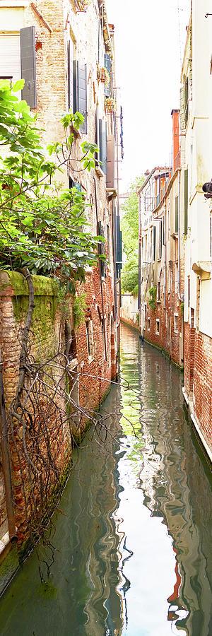 Dsc9422 - Bridge of Tentor, Venice by Marco Missiaja