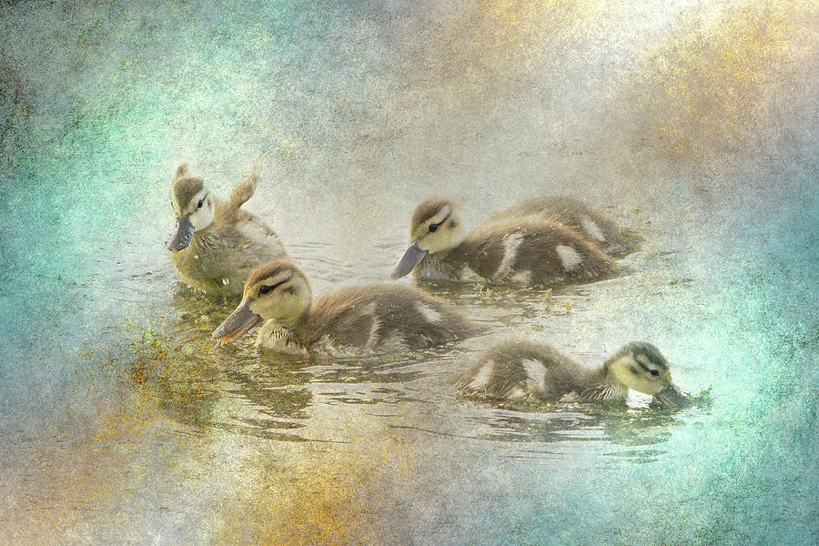 Ducklings with Texture  by Patti Deters