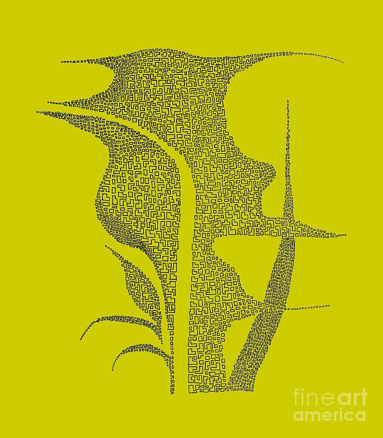 Duckweed Drawing