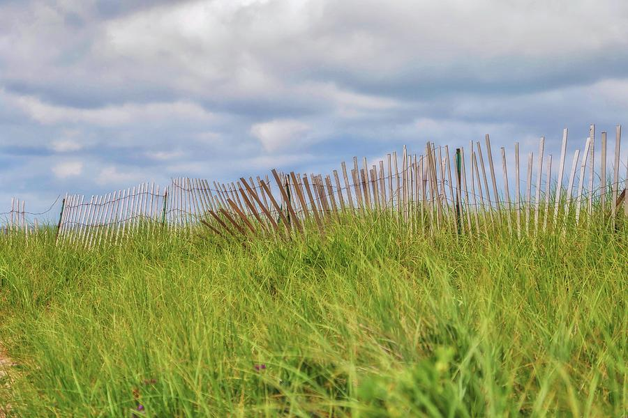 Dune Grass Fence by Marisa Geraghty Photography
