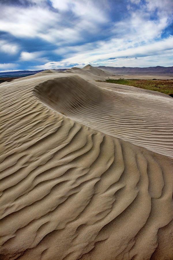 Dune Ripples by Harold Carlson