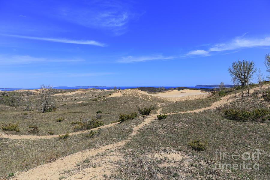 Dune Trails Photograph