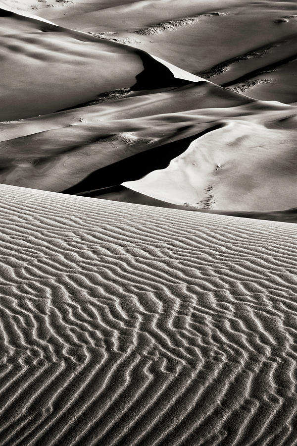 Dunes And Ripples Photograph