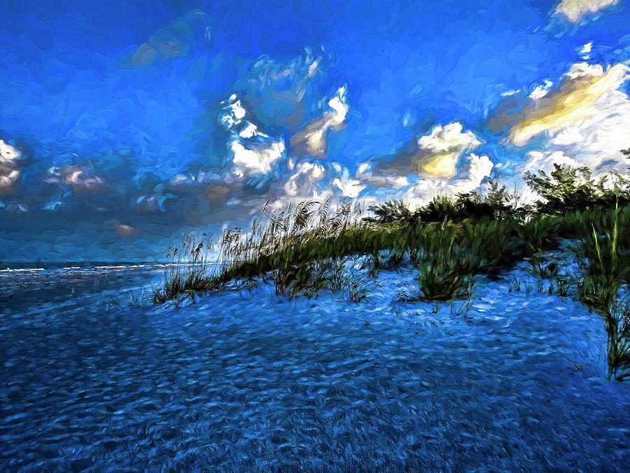 Dunes at Coquina Beach by Robert Stanhope