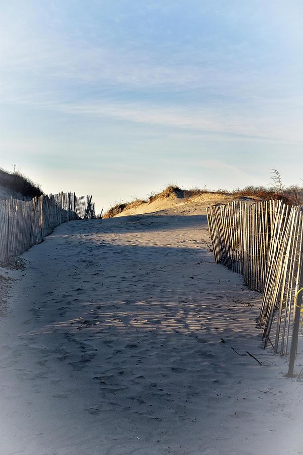 Dunes, Sand, and Beach Fences by NANCY DE FLON