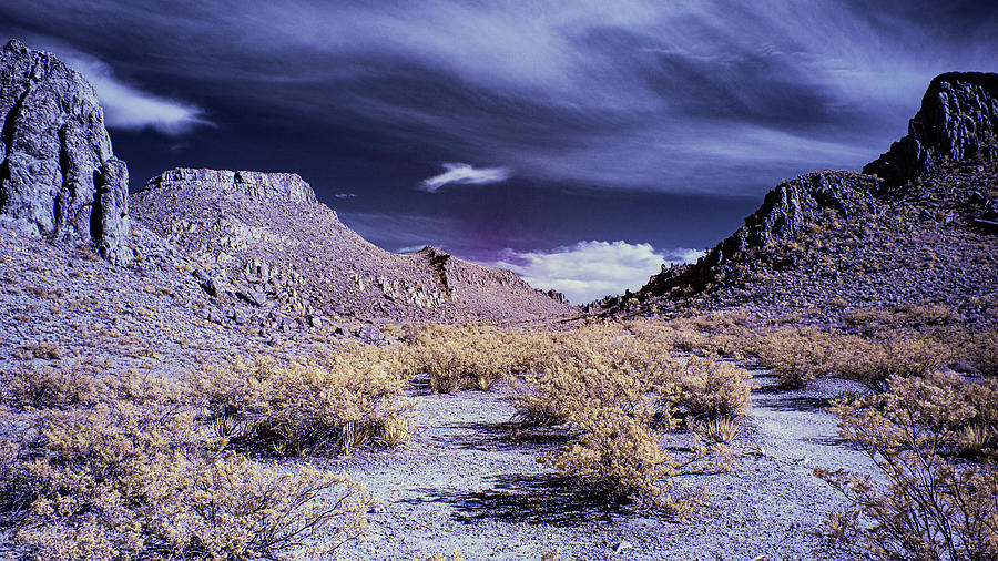 Texas Photograph - Dusk In The Grapevine Hills by Jim Cook