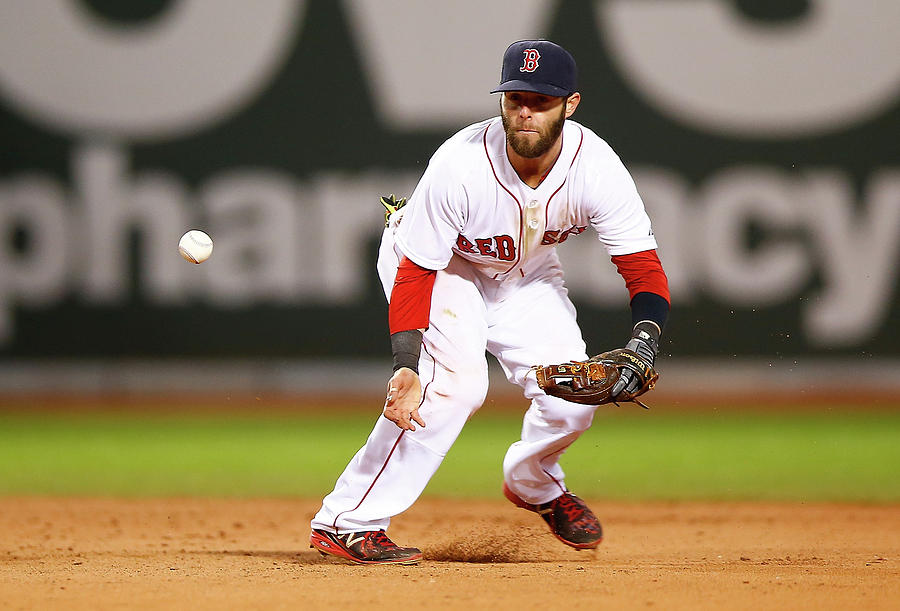Dustin Pedroia Photograph by Jared Wickerham