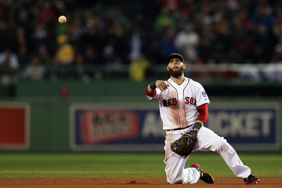 Dustin Pedroia Photograph by Rob Carr