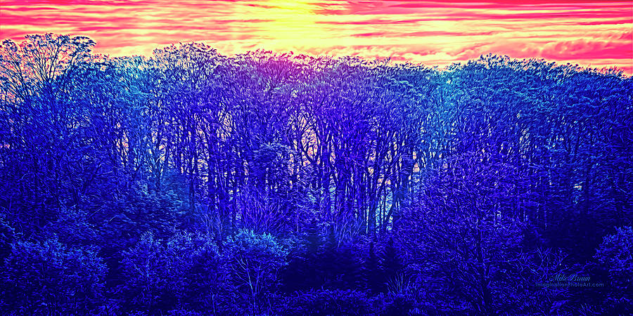 Sunrise Digital Art - Dyed Carnation Morning by Mike Braun