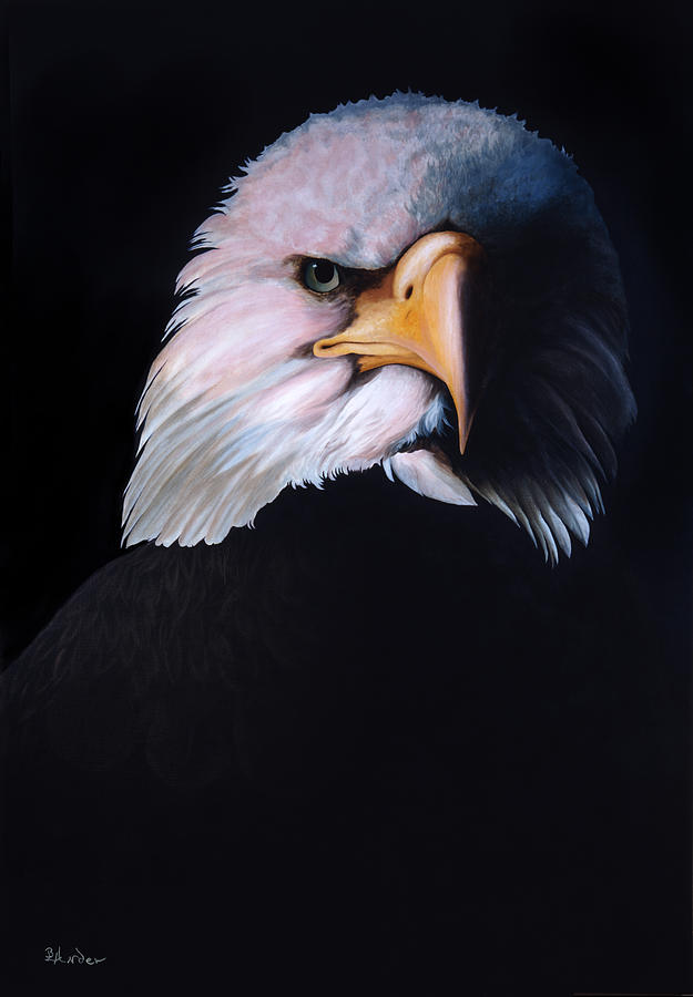 Eagle Painting - Eagle Eye by Brent Ander