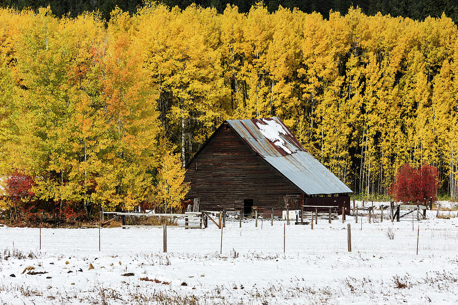 Early Autumn Winter by Mark Kiver