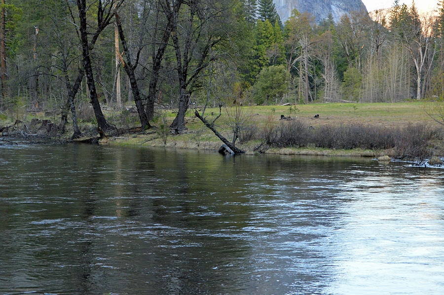 Early Evening Merced River Photograph