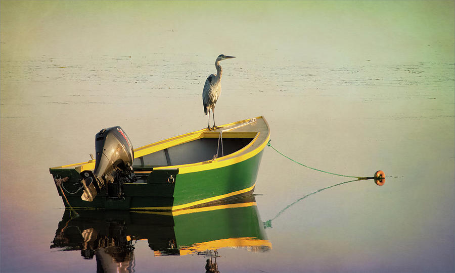 Early Morning in Rustico Harbour by Douglas Wielfaert