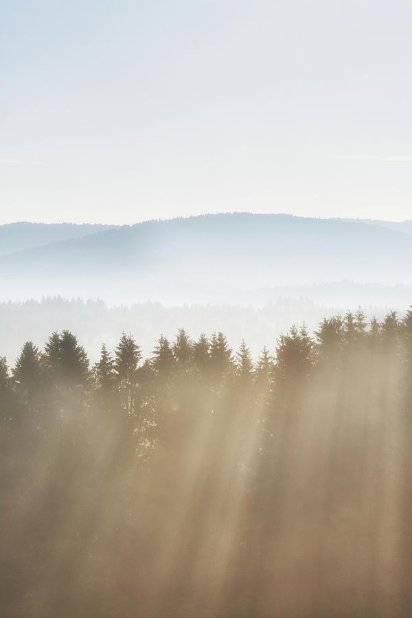 Early Morning Sun Photograph