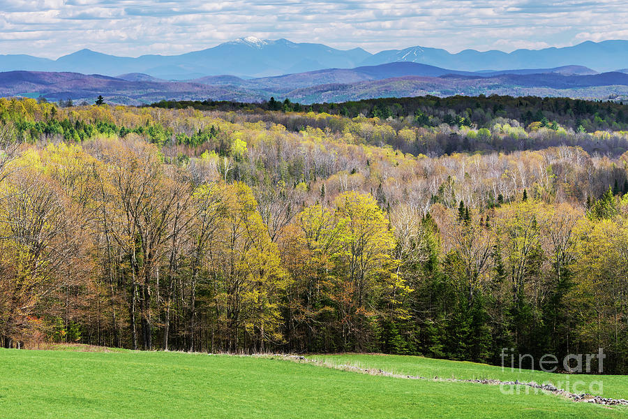 Early Spring New England Landscape Photograph