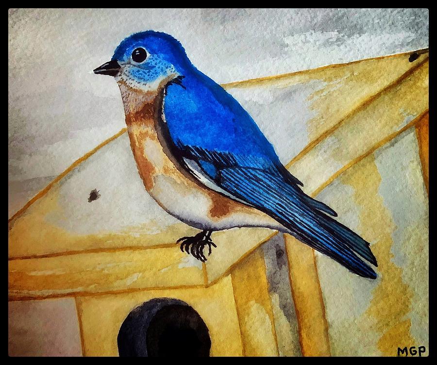 Eastern Bluebird W/ Border Painting