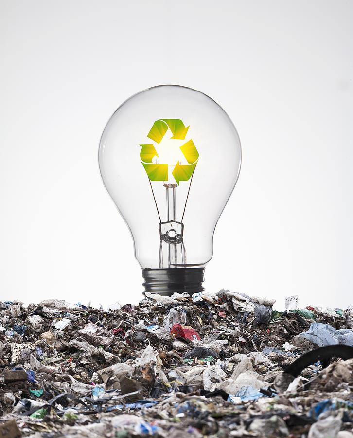 Ecologic Bulb Photograph by Buena Vista Images