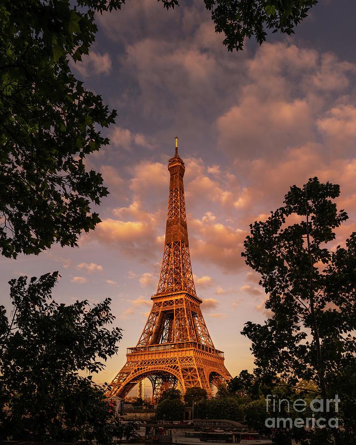 Paris Photograph - Eiffel Tower Frame Tree Sunset by Thomas Speck