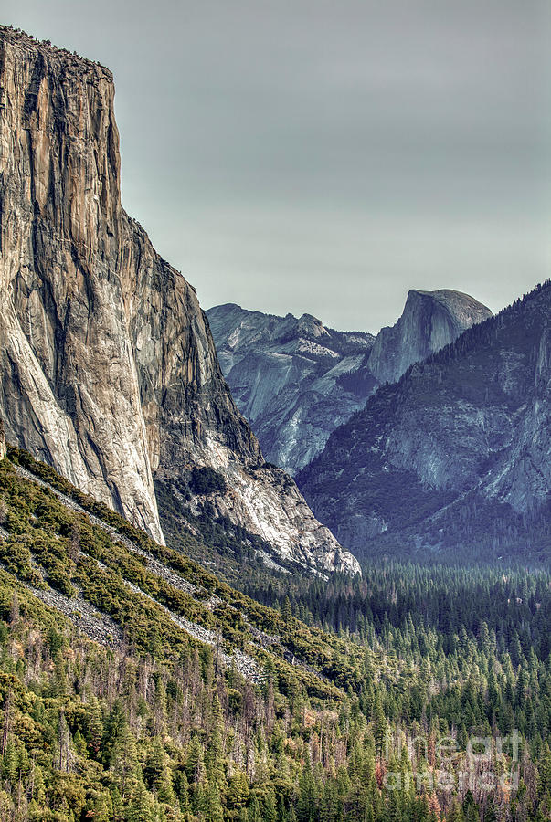 El Capitan And Half Dome Yosemite National Park Color Photograph