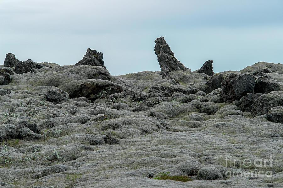Eldhraun Lava Field - Southern Iceland Photograph