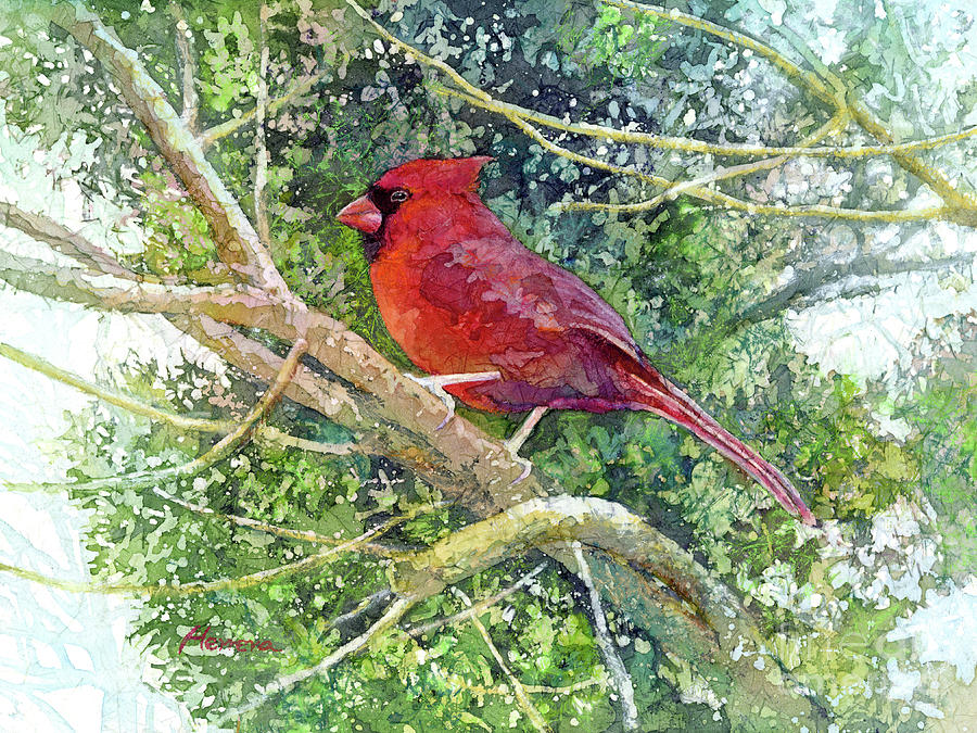 Cardinal Painting - Elegance in Red-pastel colors by Hailey E Herrera