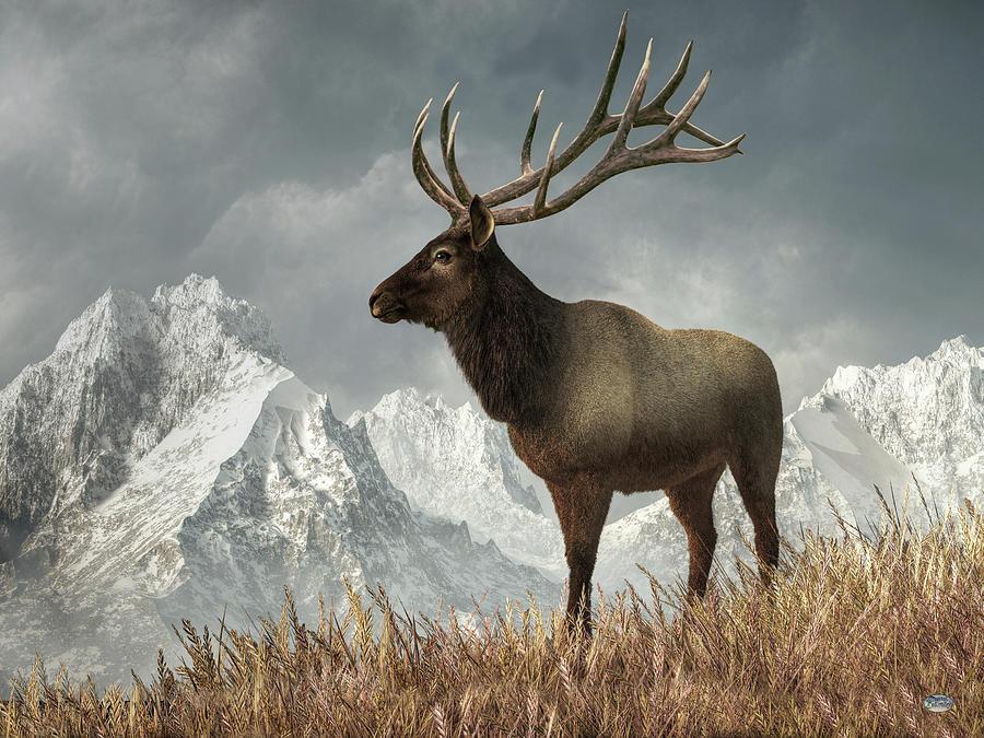 Elk Digital Art