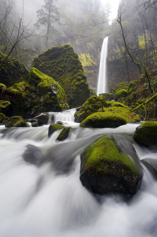 Falls Photograph - Elowah by Mike  Dawson