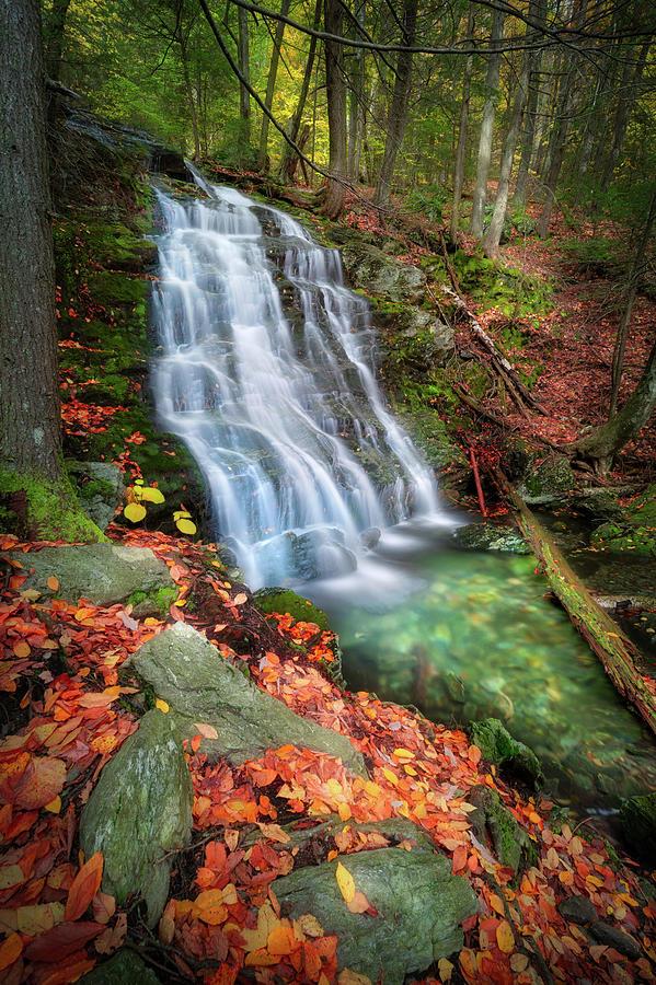 Emerald Water by Bill Wakeley