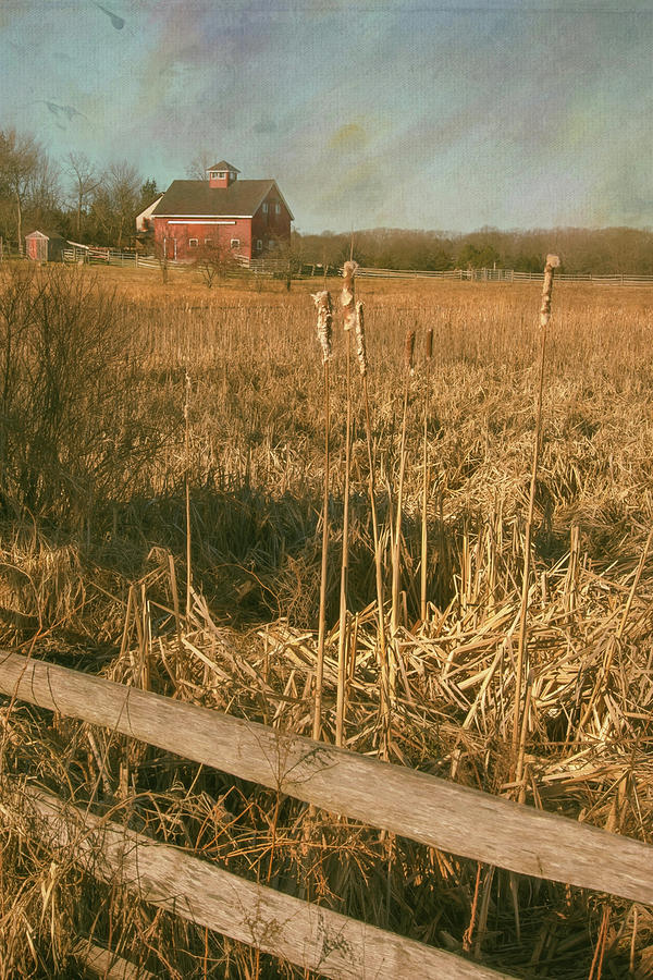 End Of Autumn - Country Farm Photograph