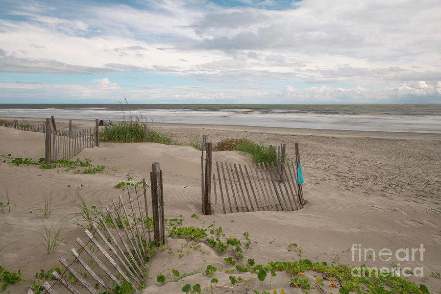 Endless Summer - Isle Of Palms Photograph