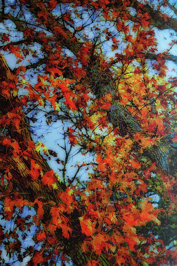 Garden Of The Gods Digital Art - Endless_Color_20210319 by Joseph Liberti