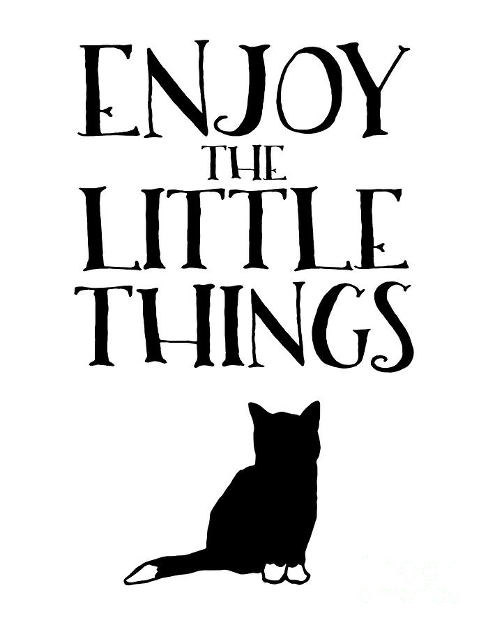 Cat Mixed Media - Enjoy the Little Things by PurrVeyor Com