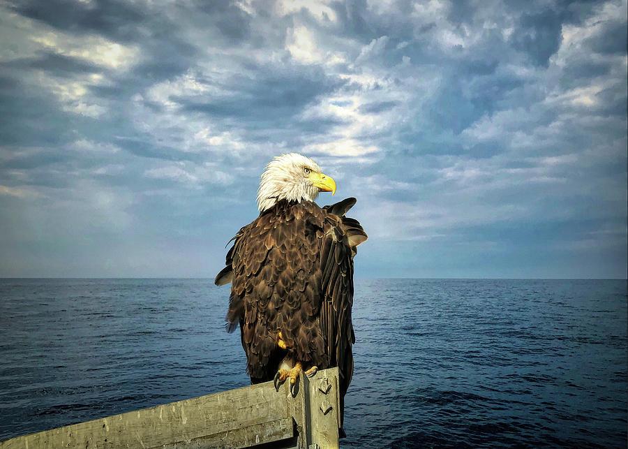 Enjoying a Maine Sky by Jack Wilson