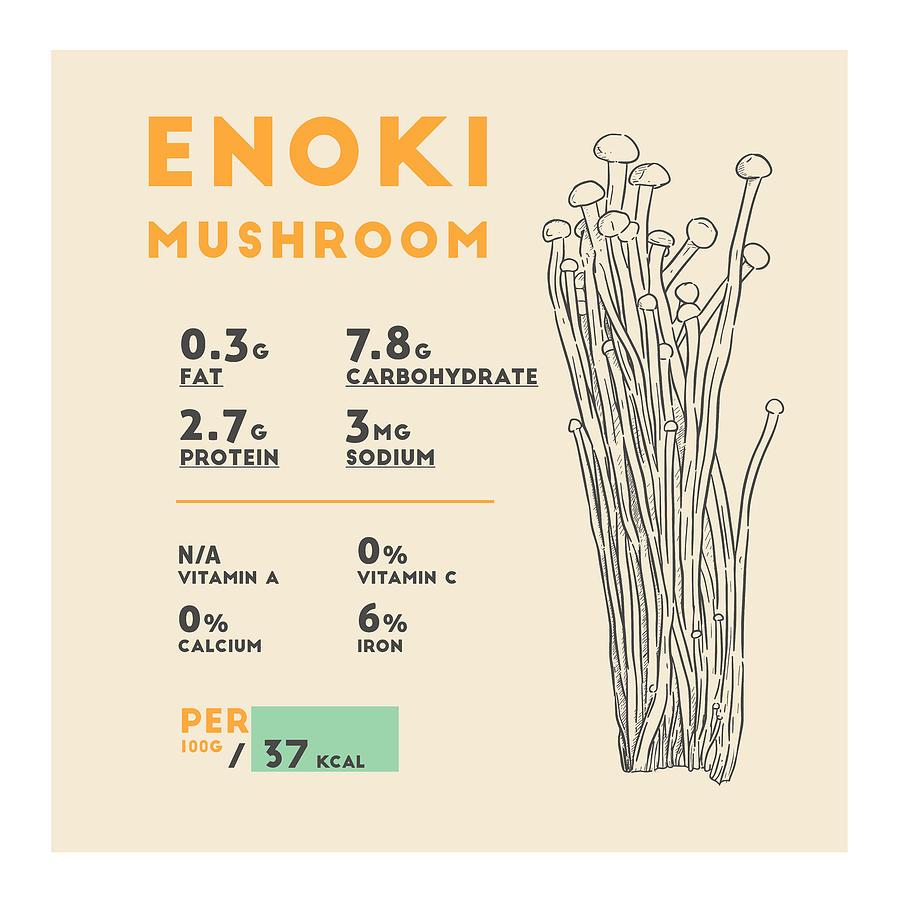 Enoki Mushroom Nutrition Facts Drawing By Beautify My Walls