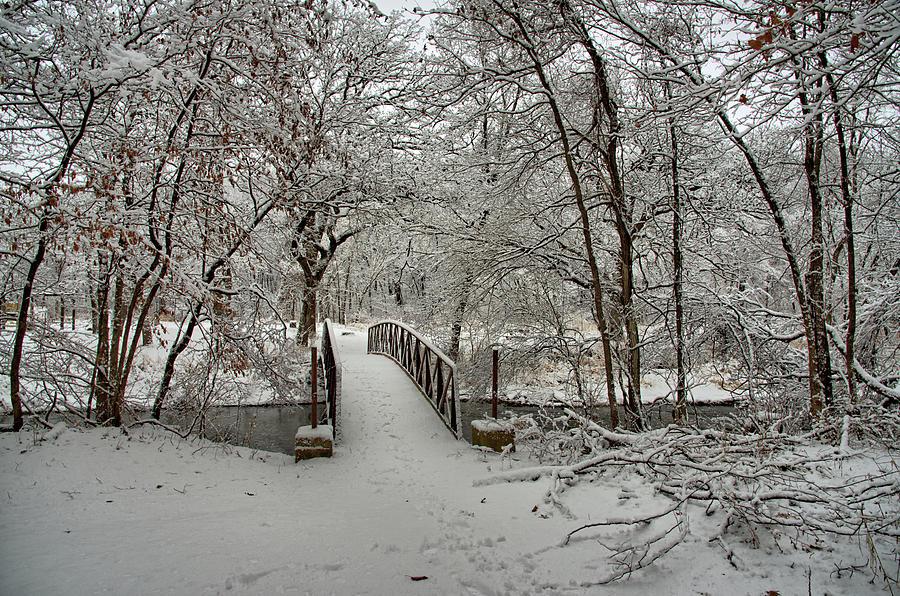 Bridge Photograph - Entering Wonderland by Bonfire Photography