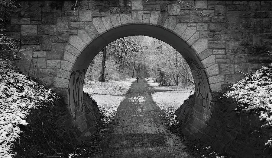 Monochrome Photograph - Entrance to a Magical Winter Wonderland by Mark Robert Davey