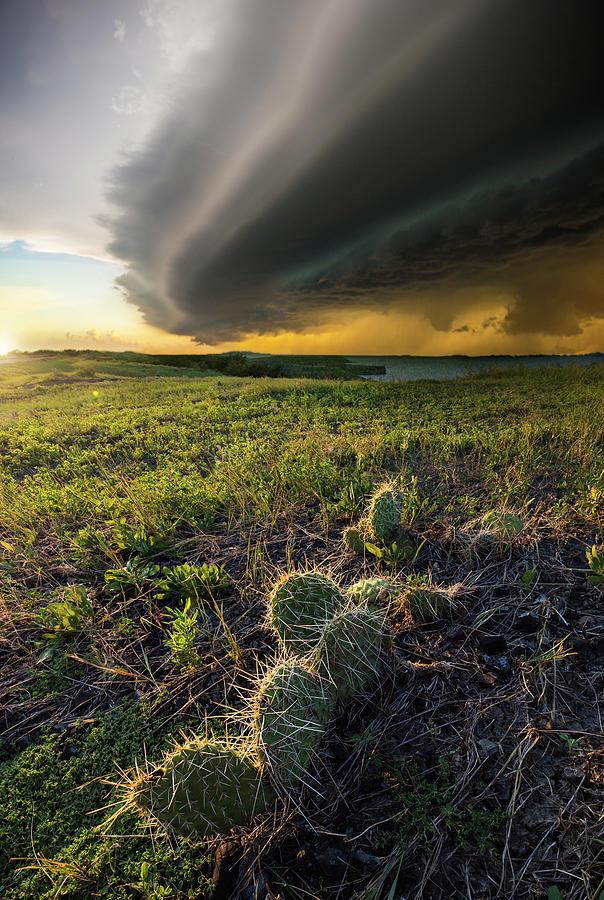 Chaos Photograph - Entropy by Aaron J Groen