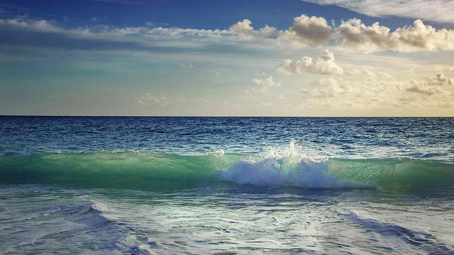 Green Wave Photograph - Envy by Rebecca Herranen