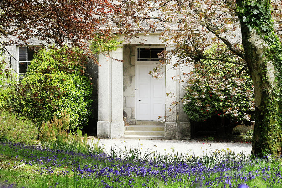 Enys House Front Door Photograph