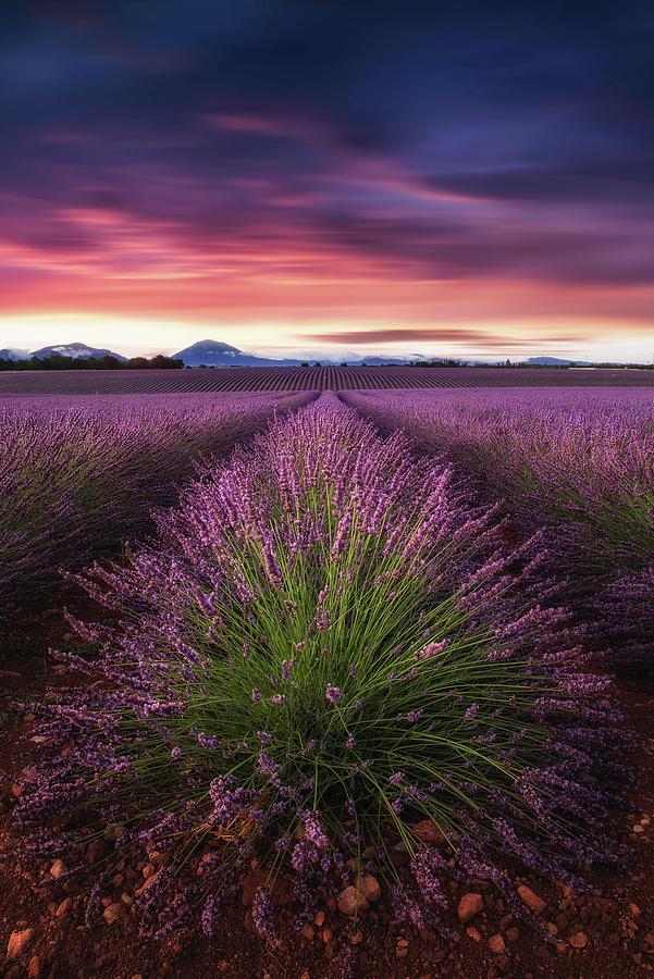 Epic Sunrise Photograph