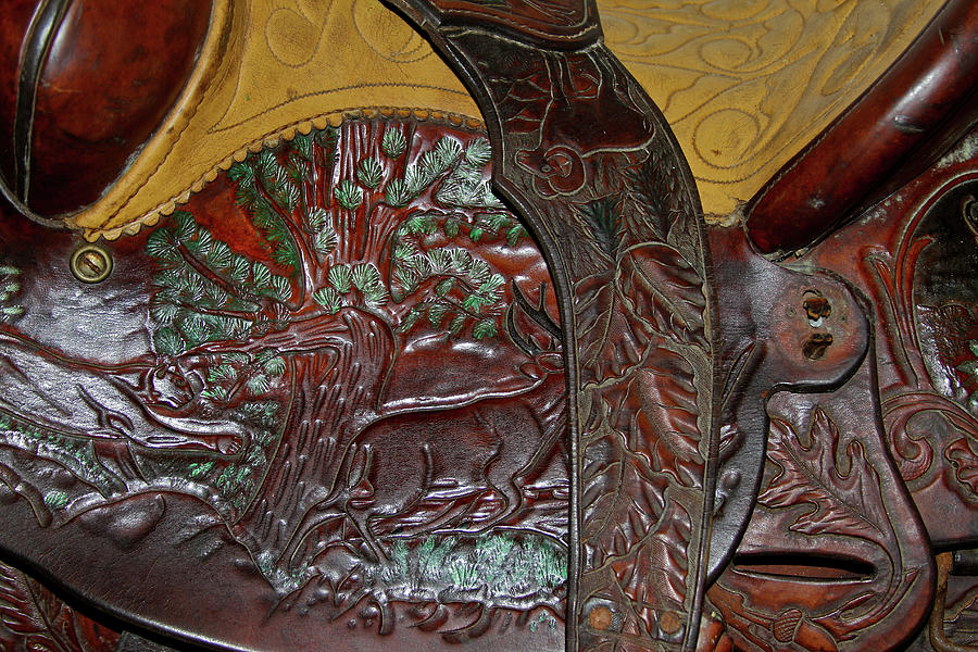 Horses Photograph - Equestrian Saddle Detail, Argentina by Venetia Featherstone-Witty