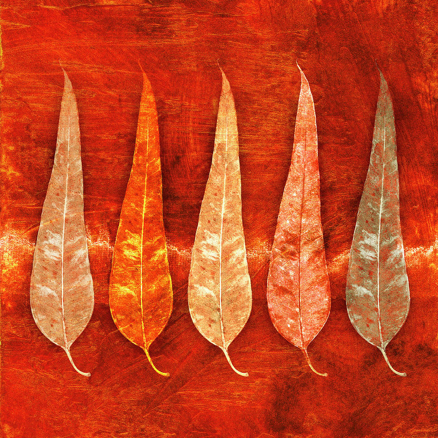 Eucalyptus Leaves in Fall by Carol Leigh