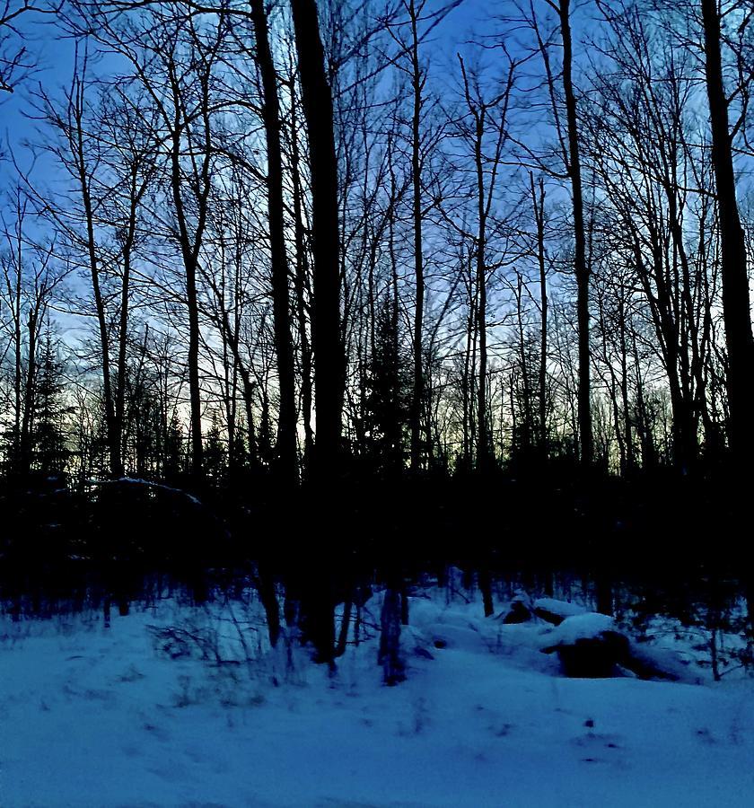 Evening Solitude Photograph